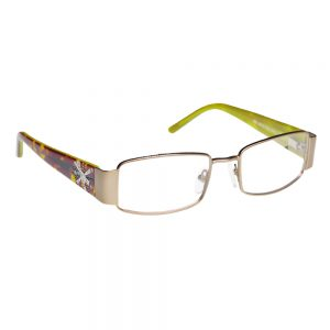 ArmouRx 7009 Metal Safety Glasses
