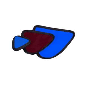 Female Gonad Shield